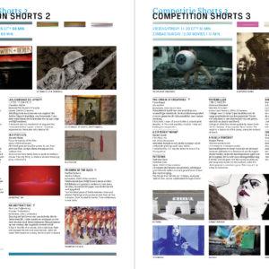 Ontwerp programmatijdschrift Holland Animation Film Festival